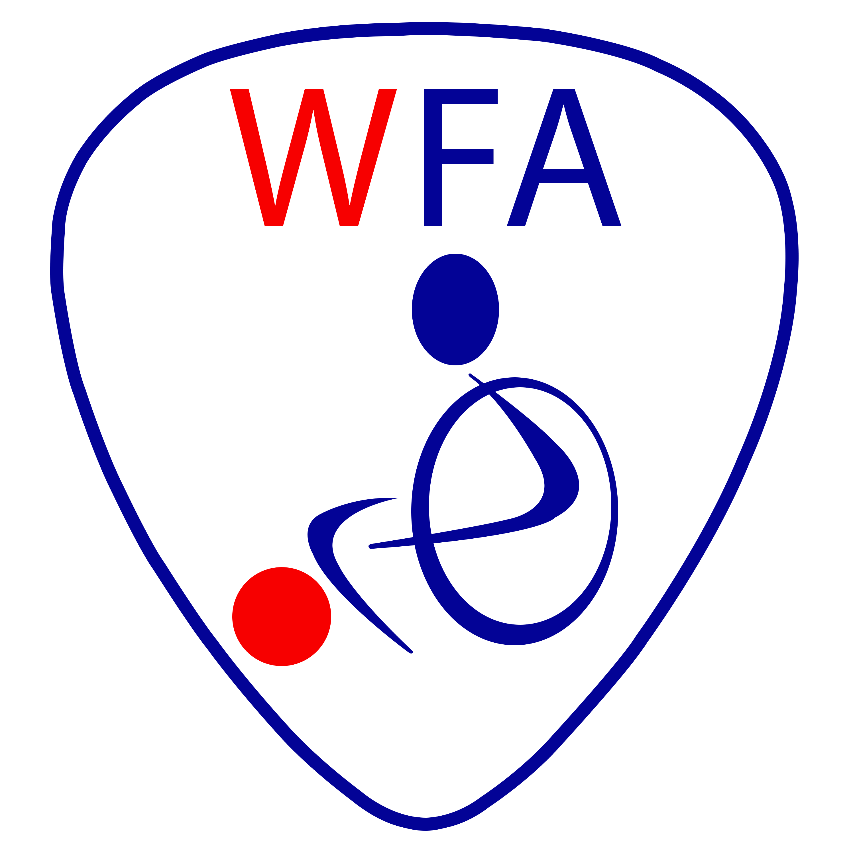 Wheelchair Football Association (WFA)